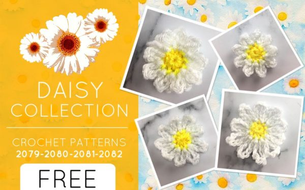 DAISY COLLECTION (2079-82)