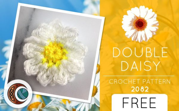 DOUBLE DAISY (2082)