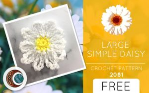 LARGE SIMPLE DAISY (2081)