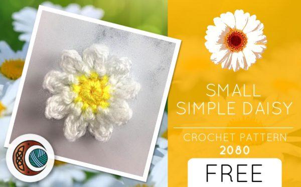 SMALL SIMPLE DAISY (2080)